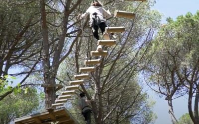 Bosc Vertical després del COVID-19
